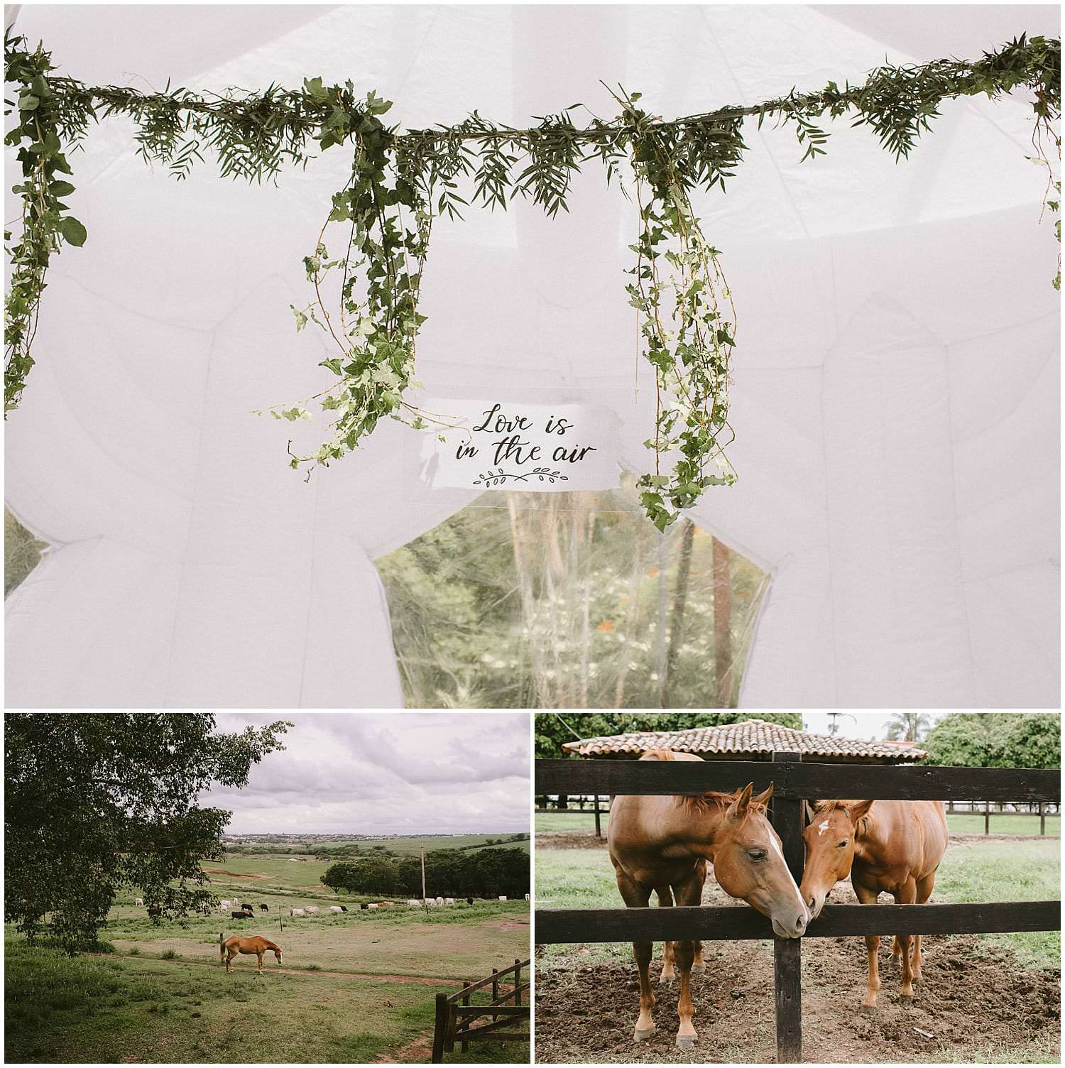 casamento-fazenda-quilombo-giugui_01 Casamento Fazenda Quilombo - Giu+Gui